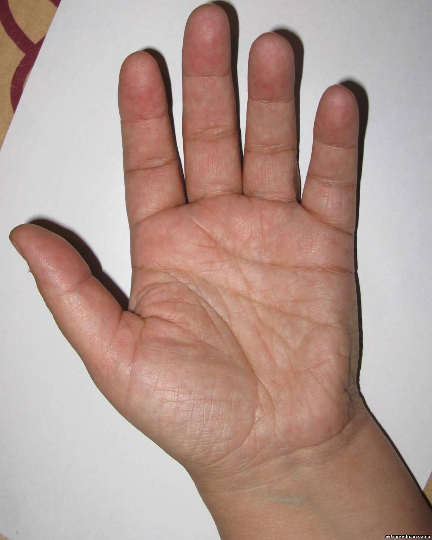Костюм верки сердючки своими руками фото того
