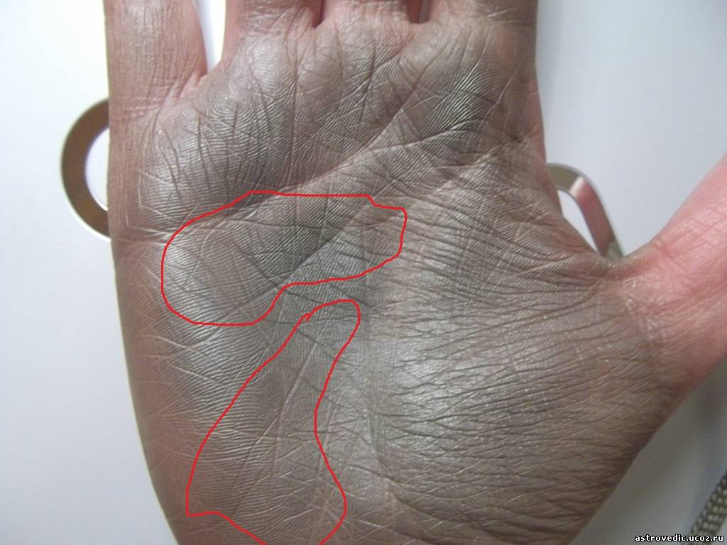 как сфотографировать линии руки нам